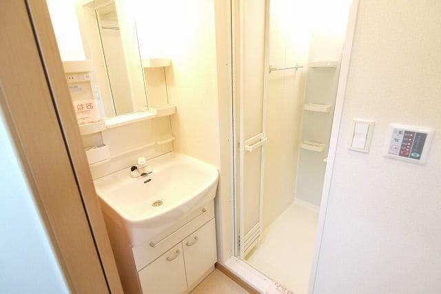 ロイヤルシティ- AYA 305号室の洗面所