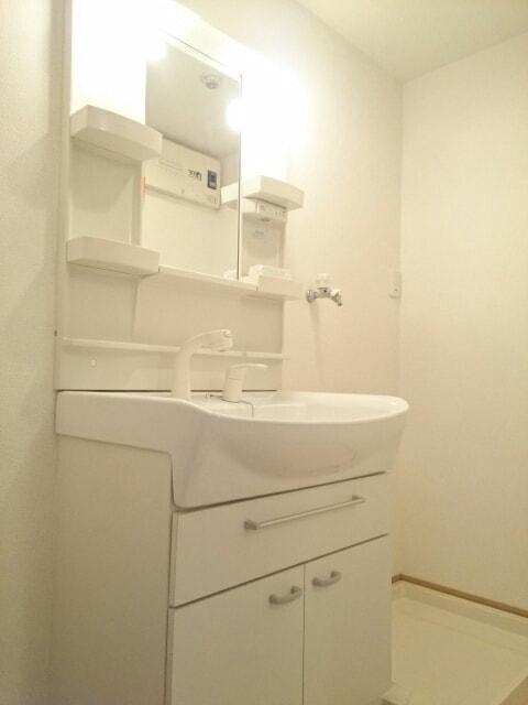 リュミエール ガーデン 103号室の洗面所