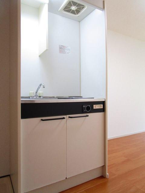 ドーミ-セイセキ 103号室のキッチン