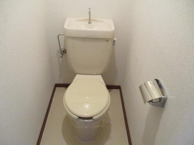 十王ハイツ 202号室のトイレ