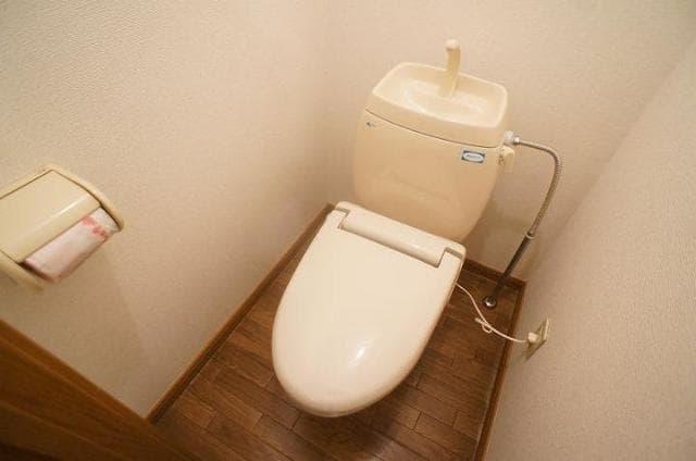 エミネンスユイⅡ 02020号室のトイレ