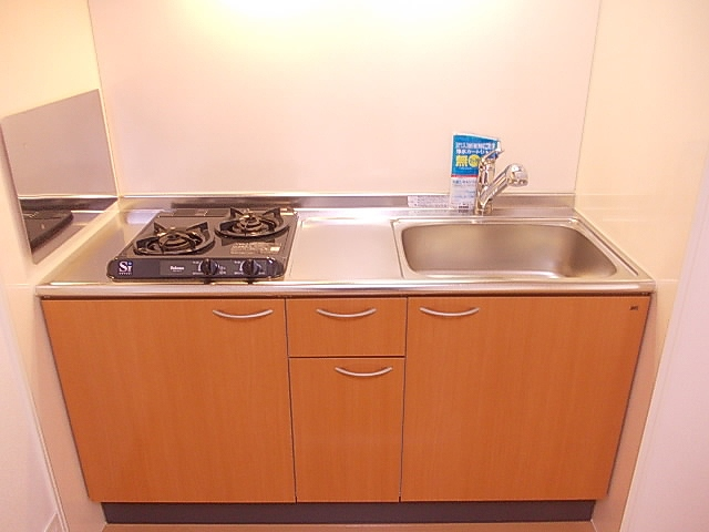 ミニヨン 101号室のキッチン