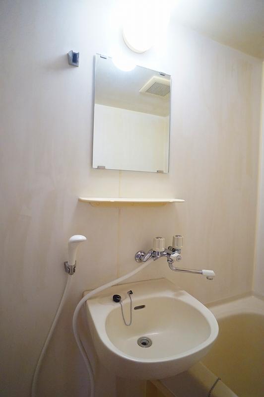 グリーンハイツ 02020号室の洗面所