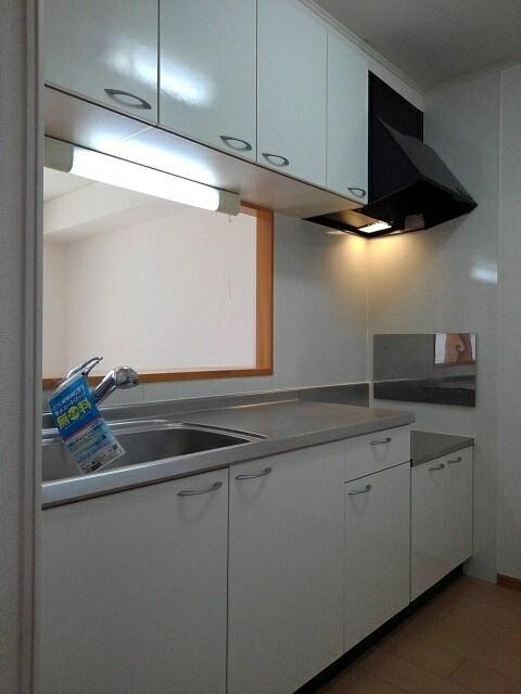 ファースト ブリッジ上青山 101号室のキッチン