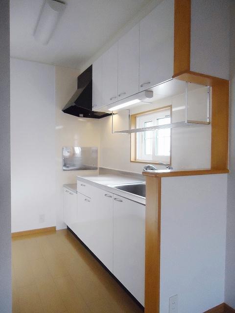 サンレミ・国森D 201号室のキッチン