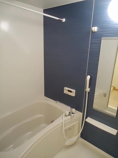 サンレミ・国森D 201号室の風呂