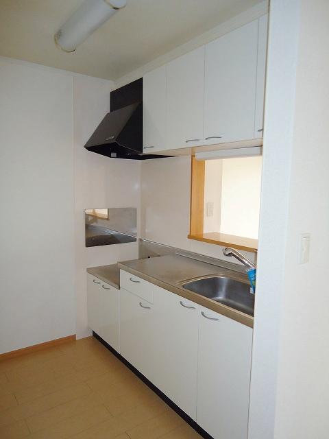 リヴウェルコート W 202号室のキッチン
