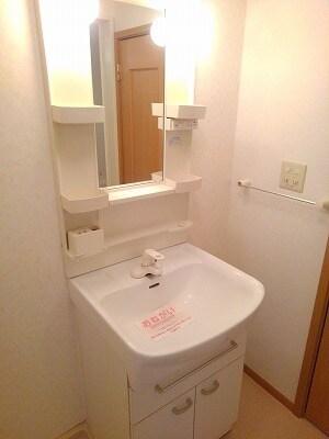 アヴニールA 02010号室の洗面所