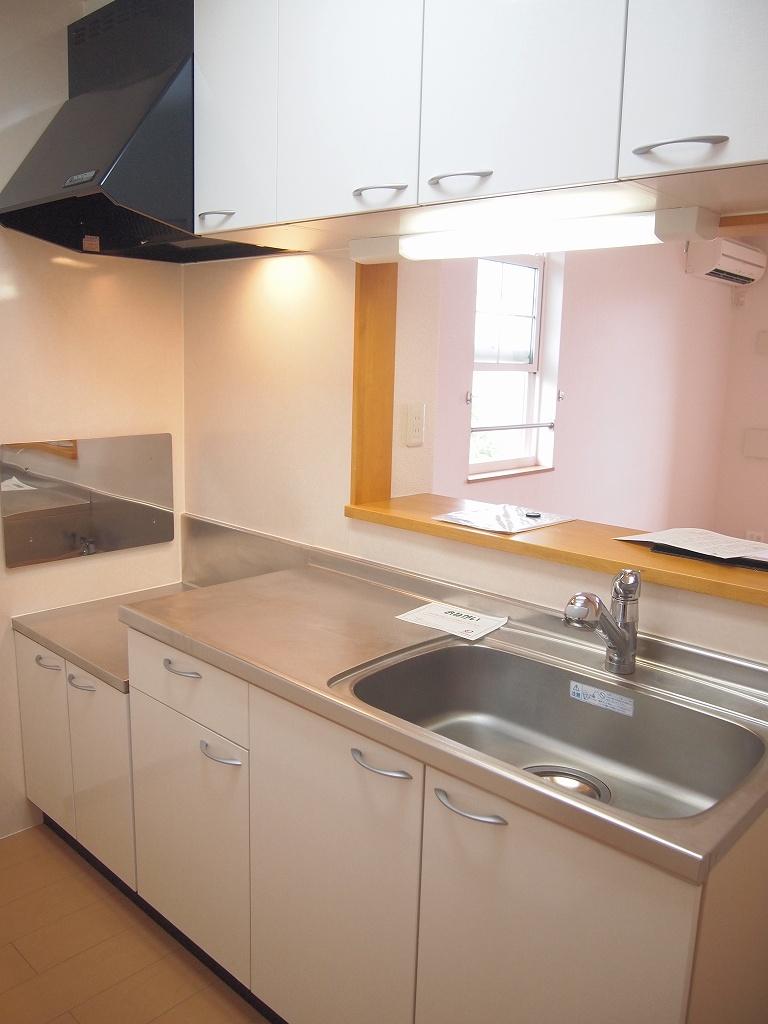 ラソ・ヒメーノⅠ 202号室のキッチン