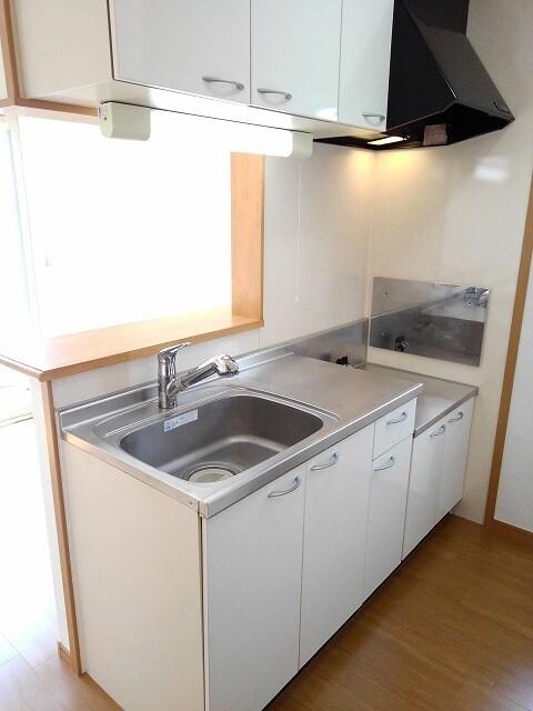 ヴィラ・サニーヒル 02010号室のキッチン