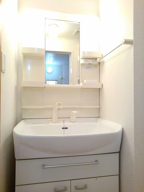 ヴィラ・サニーヒル 02010号室の洗面所