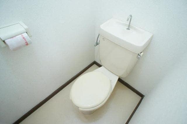 メゾントミ-Ⅱ 01020号室のトイレ