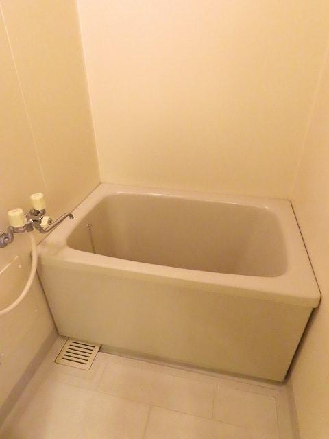 ゆ-とぴあ大橋 02010号室の風呂