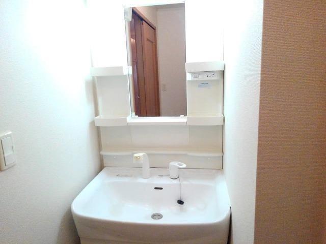 メゾンドラフレB 101号室の洗面所