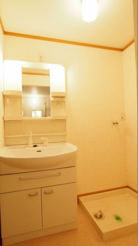 ムイ ビエ-ンA 02030号室の洗面所