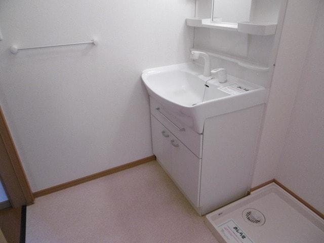 オーベルジーヌM 01020号室の洗面所