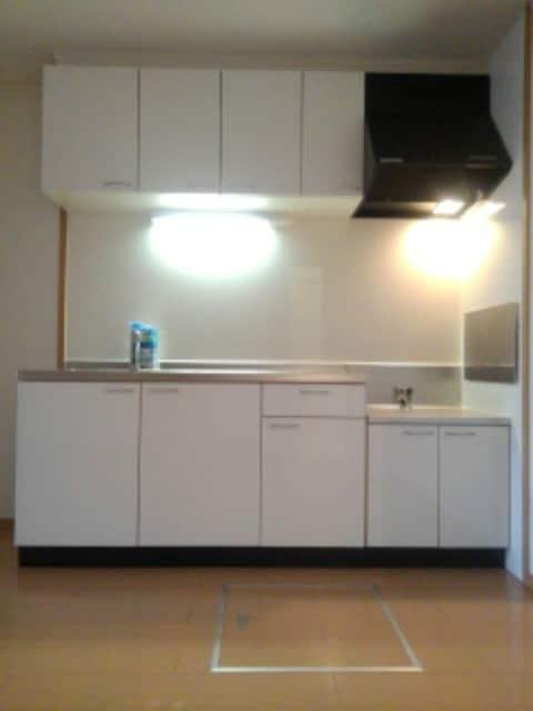 マックス ビローバ 102号室のキッチン
