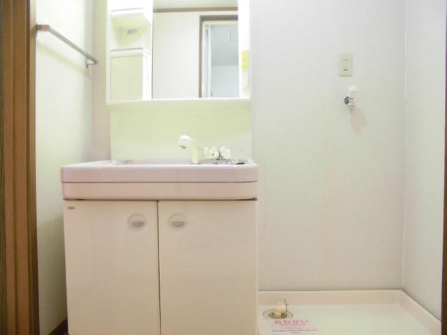アネックス 02010号室の洗面所