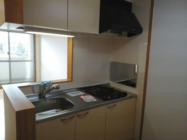 ステラ・ランド 307号室のキッチン