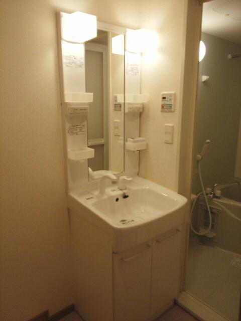 ステラ・ランド 307号室の洗面所