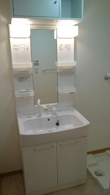 オーシャンブルー 203号室の洗面所