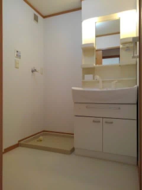 レクサスA 02010号室の洗面所