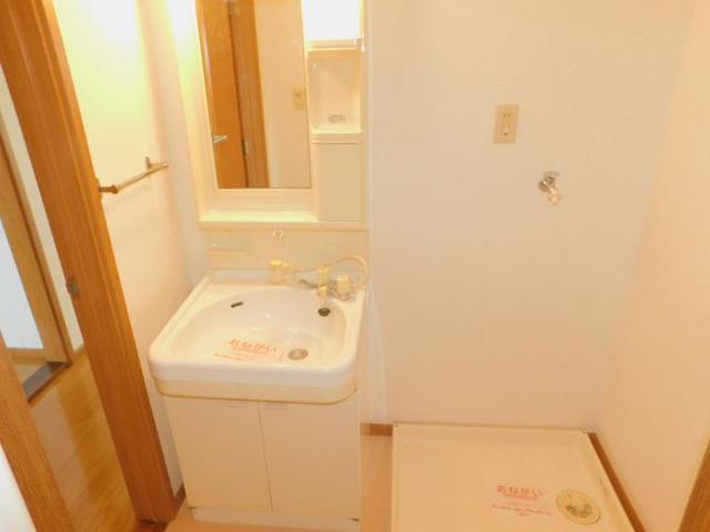 サンパティークおかもとC 01020号室の洗面所