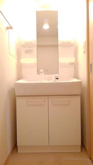 フラワーガーデン 02040号室の洗面所