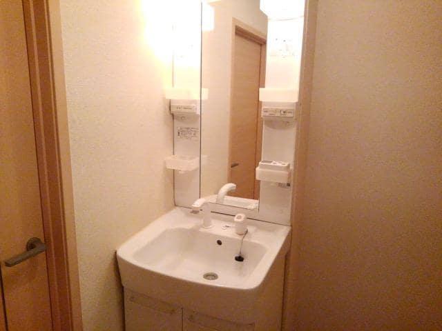 エルディムユートピアA 203号室の洗面所