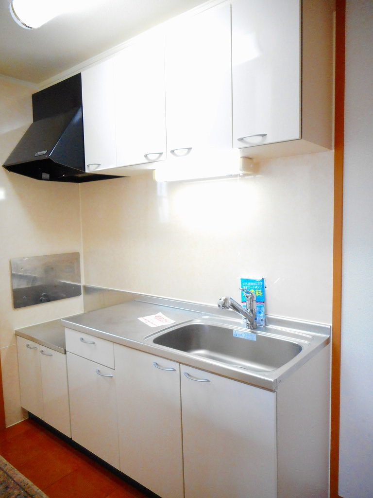 フィオーレ・アロッジオⅠ 02010号室のキッチン
