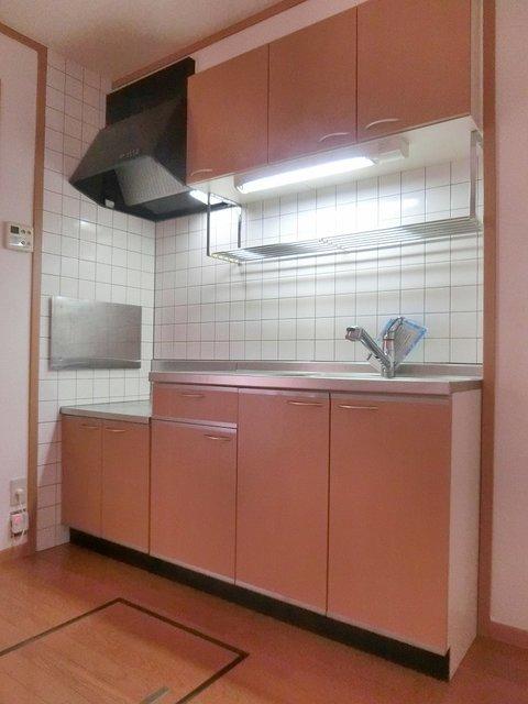 ツインコート B 01010号室のキッチン