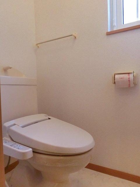 ツインコート B 01010号室のトイレ