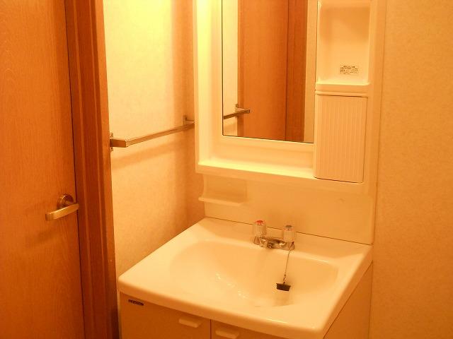 田端ハウス 01030号室の洗面所