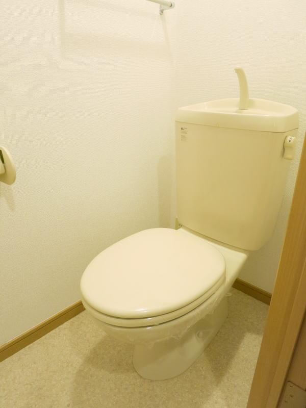 メゾン ラフィーネⅠ番館 101号室のトイレ