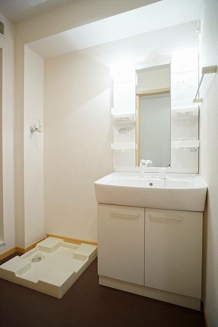 イ-ストピ-ス 01030号室の洗面所