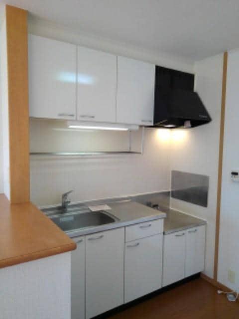 ヌーヴォー三木A 201号室のキッチン