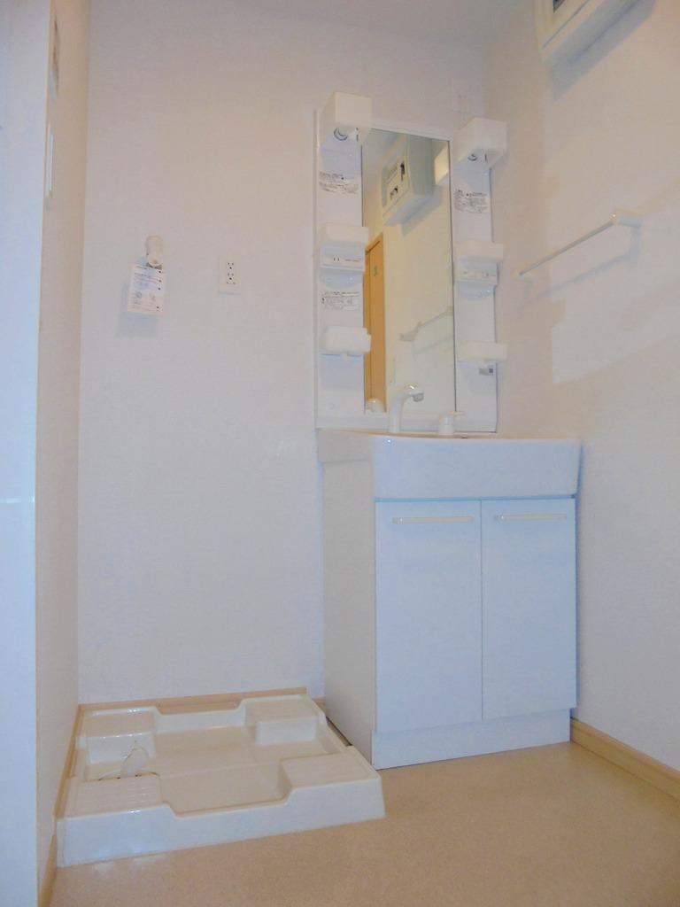 エバーグリーン 303号室の洗面所