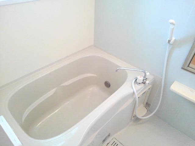 ペアハウスヒロセH 02010号室の風呂