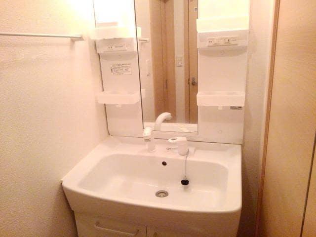 ペアハウスヒロセH 02010号室の洗面所