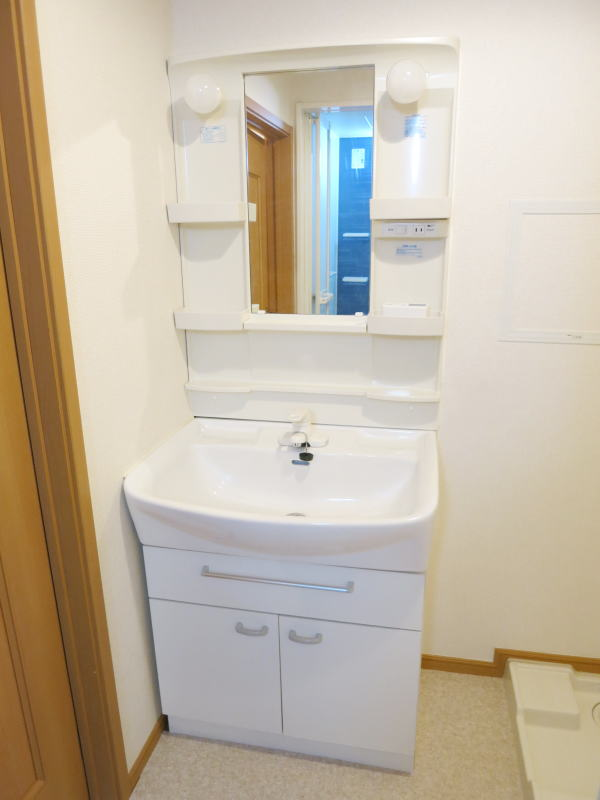 アルモニー 202号室の洗面所