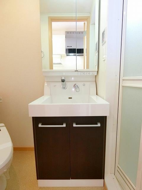 ブッシュクロ-バ-Ⅱ 03040号室の洗面所