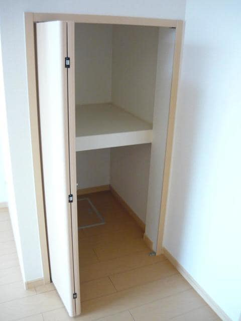 ヒルサイド向山 01020号室の収納