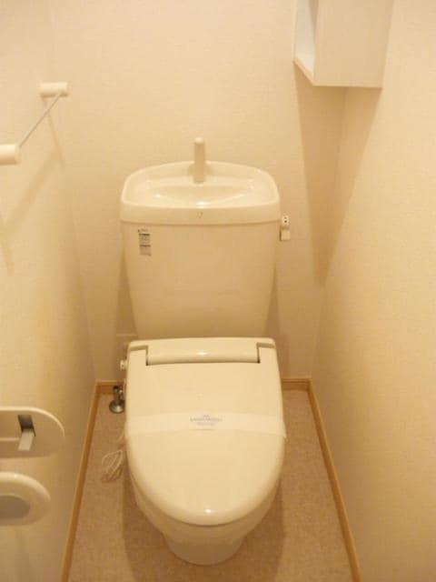 ヒルサイド向山 01020号室のトイレ