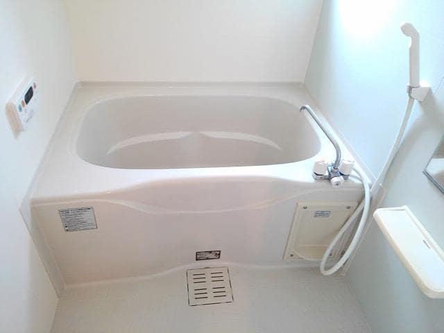 グラン・ブリエ 弐 01010号室の風呂