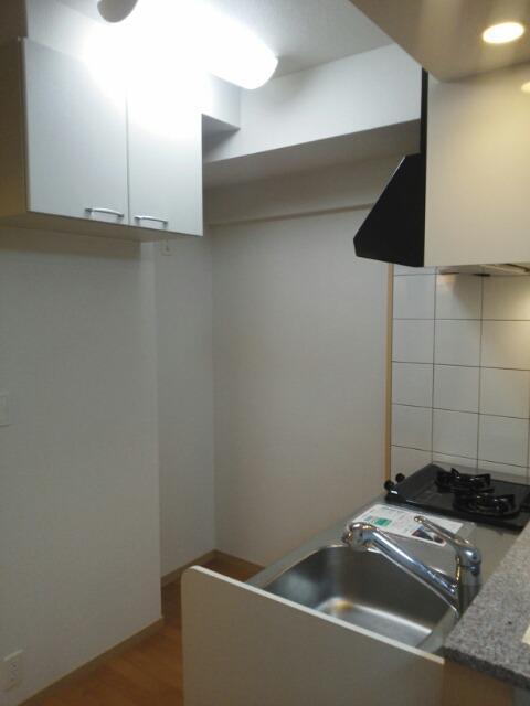 ニューアメニティービラ壺屋 202号室のキッチン