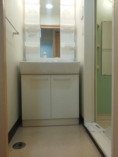 ニューアメニティービラ壺屋 202号室の洗面所