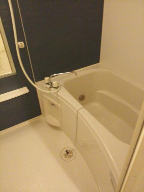 メゾン カワセミ 02010号室の風呂