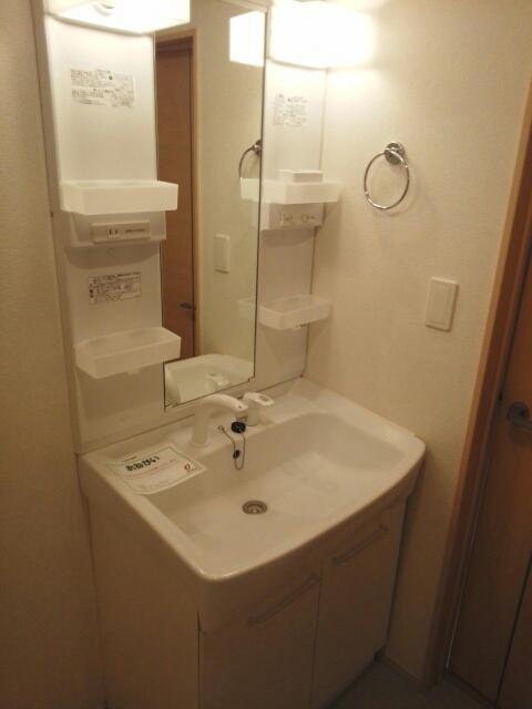 メゾン カワセミ 02010号室の洗面所