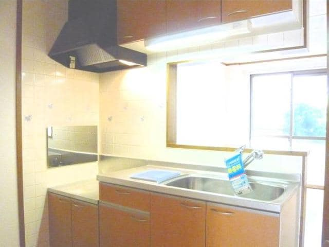 ラッフィナートA 01010号室のキッチン