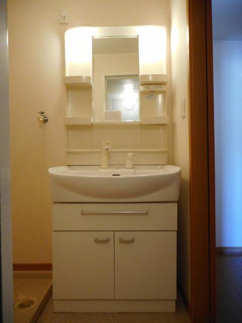 メゾン ソレイユ 201号室の洗面所